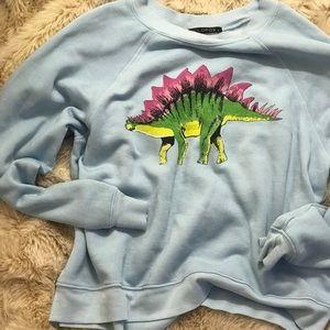 Wild fox Blue Dinosaur Jumper Sweater Pullover S